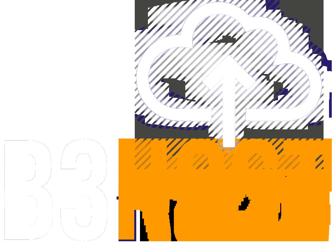 Richmond Hill Web Hosting
